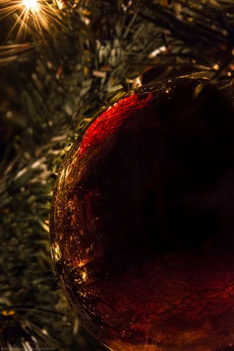 This is my favorite Christmas ball. You will see it a lot in this post. Nikon D7100 at f/18. ISO 3200.
