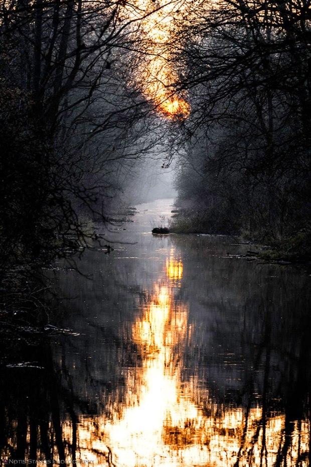 Sunset - reflection - river - Munich