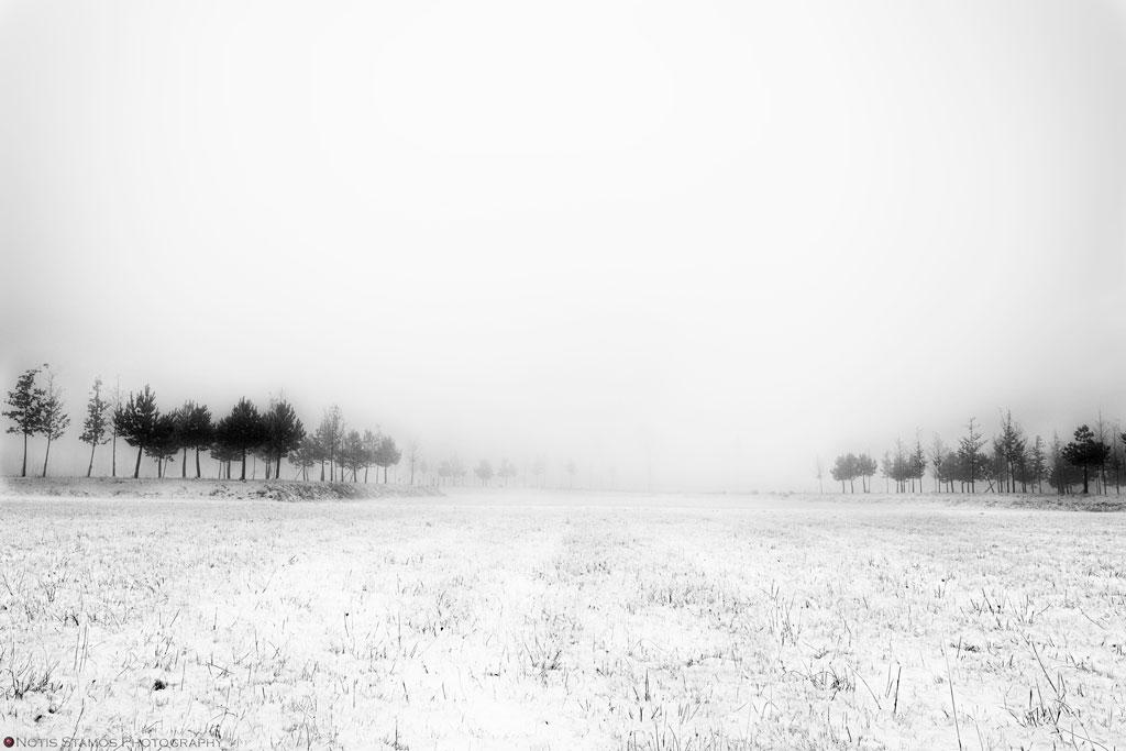 Misty-trees-2-1024-bl
