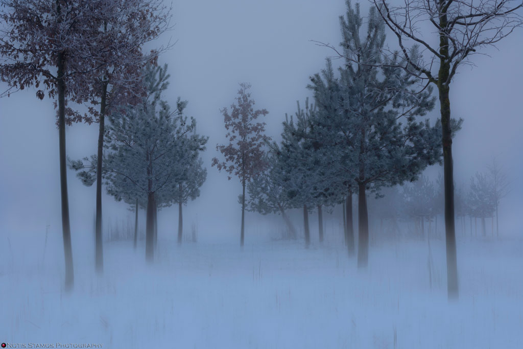 Misty-Trees-FA-1024-bl