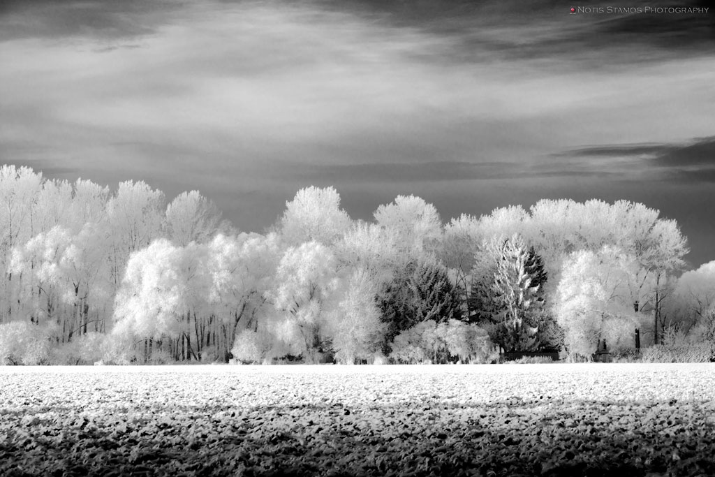 Morning frost - Notis Stamos - Munich - B&W