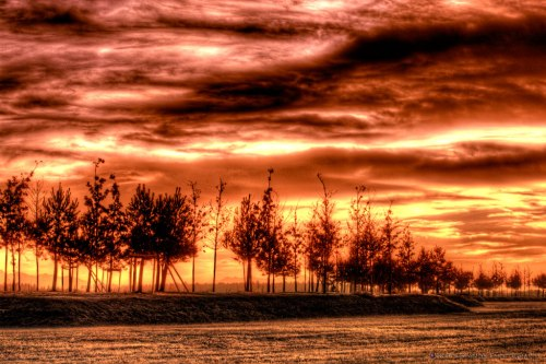 Sunrise - Sunset - HDR - Row of trees - Notis Stamos - Munich