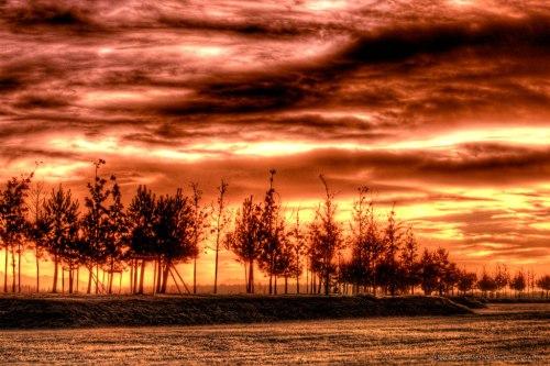 Sunrise - Sunset - HDR - Row of trees - Notis Stamos - Munich