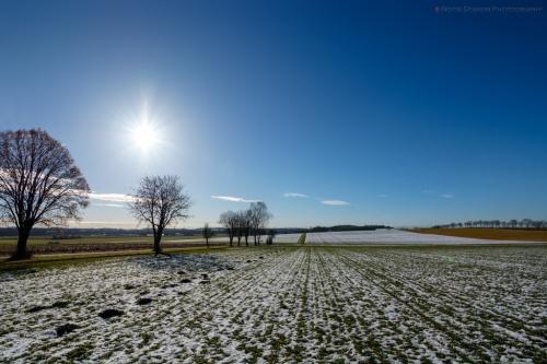 Winter, brilliant day, Notis Stamos