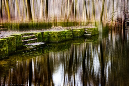 Reflection, Moss, Trees, Channel, Reflection, Notis STamos