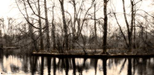 Island, Lake, Reflection, Trees, Winter, Nymphenburg, Notis Stamos