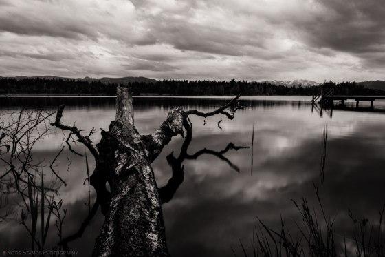 Kirchsee, Lake, Bayern, Notis Stamos, B&W