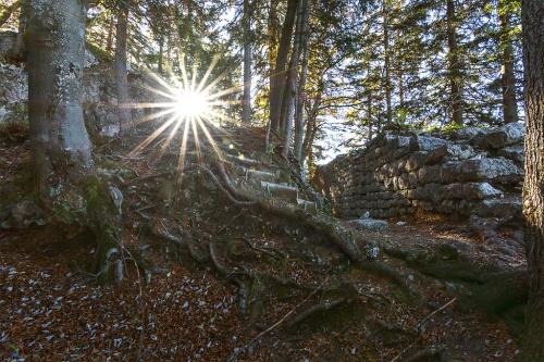 Schliersee, Ruine Hohenwaldeck, Notis Stamos, Bayern