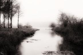 Kochel See, Mist, Fog, Trees, Lake, Notis Stamos