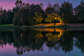 Lake, Reflection, Light, Trees, Notis Stamos