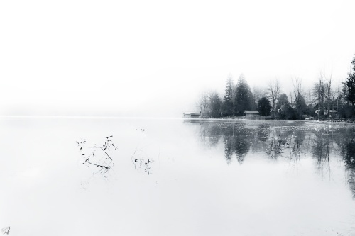 Reflection, Mist, B&W, Notis Stamos