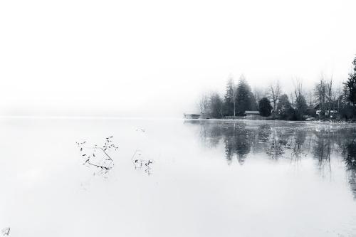 Reflection, Mist, B&W, Notis Stamos