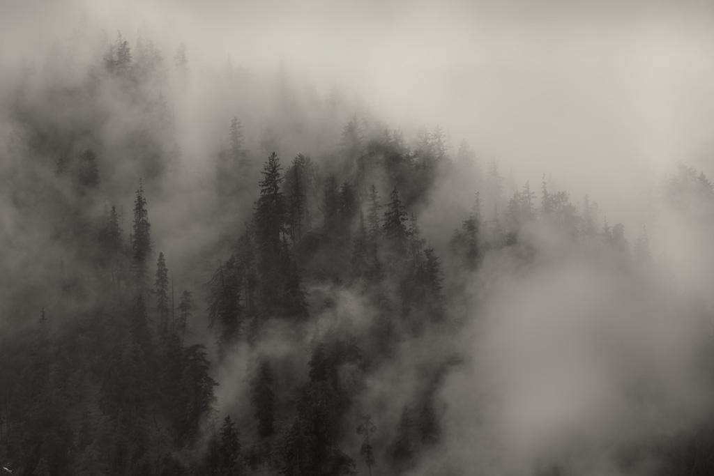Bayern, Mountain, Mist, Notis Stamos