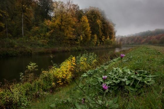 Notis Stamos, Isar, Rain, River, Munich