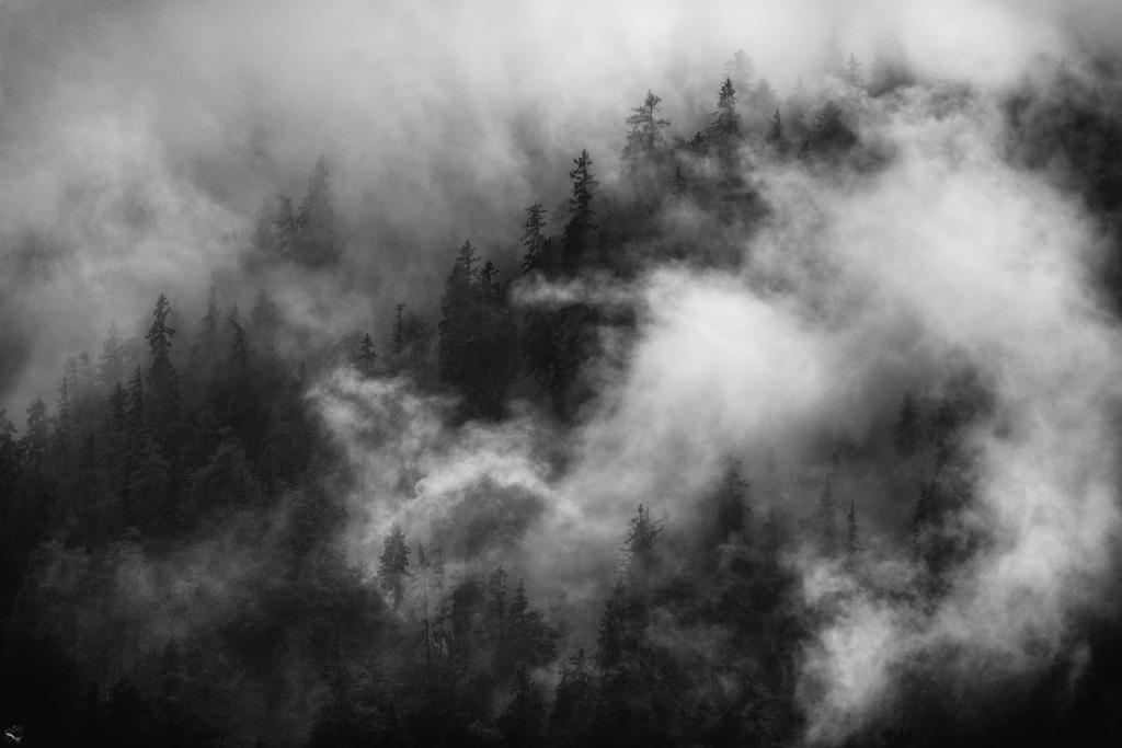 Misty mountain, Notis Stamos, Bavaria