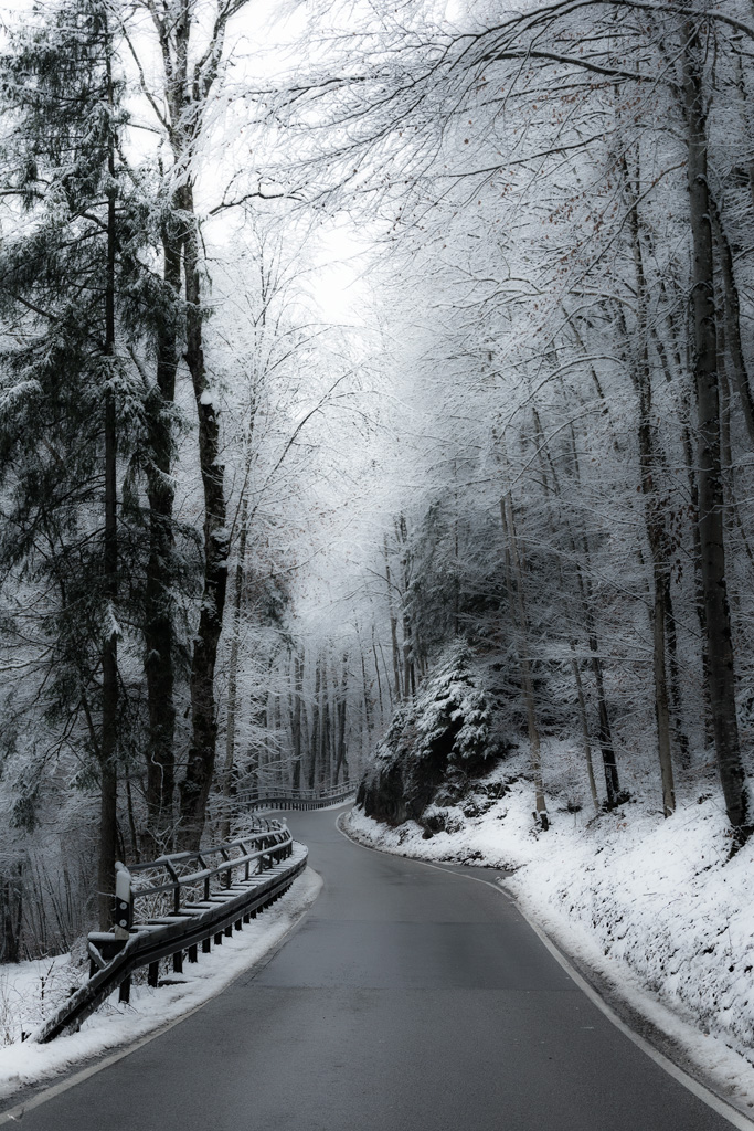 Moosach, Road, snow, Forest, Notis Stamos