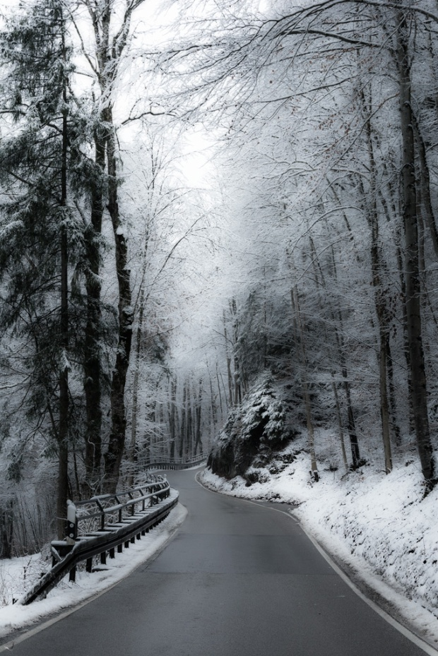 Moosach, Road, snow, Forest, Notis Stamos