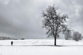 Steinsee, Winter, Snow, Notis Stamos